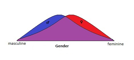 For illustrative purposes, these bell curves show the sex overlap based on the masculine-feminine continuum of gender.